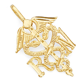 Gold Registered Nurse Charm