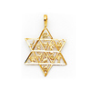Star of David With 12 Tribes of Israel Pendant - 14K Yellow Gold