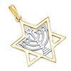 Menorah in Star of David Pendant - 14K Two-Tone Gold