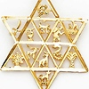 Star of David With 12 Tribes of Israel Pendant - 14K Yellow Gold thumb 1