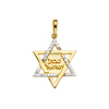 CZ Shema Yisrael Star of David Pendant in 14K Yellow Gold thumb 1